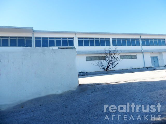 FACTORY AREA (BUILDING) for Rent - ATTICA