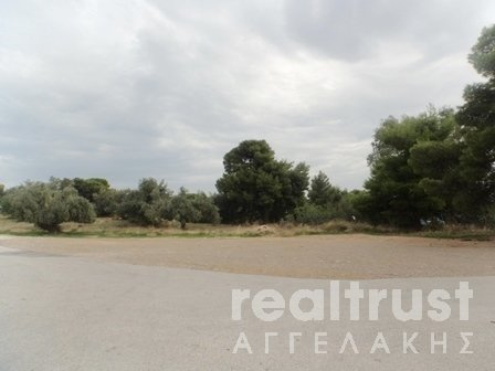 for sale PLOT PROGRAMMED FOR FUTURE CITY PLAN 160.000€ PALLINI (code Π-15301)