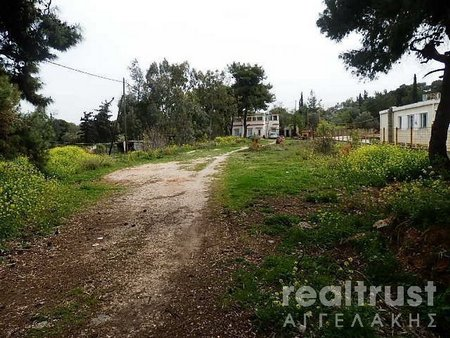 PLOT WITHIN THE CITY PLAN for sale - PEANIA ATTICA