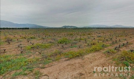 for sale FIELD ABLE TO BE BUILT 35.000€ PEANIA (code Π-10857)
