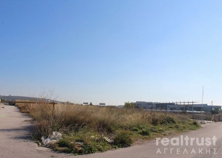WHOLESALE ZONE for rent - PALLINI ATTICA