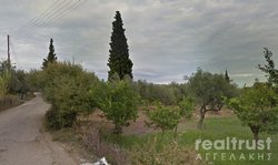 FIELD ABLE TO BE BUILT for rent - AIGIO ACHAIA
